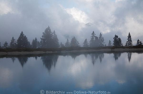 unheimliche stimmung am kaltwassersee foto in tirol berg b ume in wolken am seeufer spiegelung. Black Bedroom Furniture Sets. Home Design Ideas