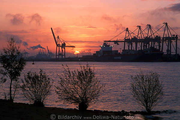 sonnenaufgang foto elbe in hamburg containerhafen bei. Black Bedroom Furniture Sets. Home Design Ideas