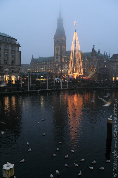 weihnachtsbaum rathaus fotos weihnachtsmarktes ber kleine alster wasser in hamburger nebel. Black Bedroom Furniture Sets. Home Design Ideas
