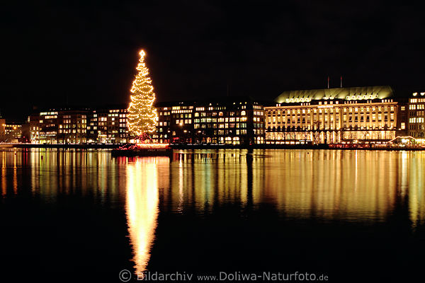 alster weihnachtsbaum foto nachtpanorama hamburg city. Black Bedroom Furniture Sets. Home Design Ideas