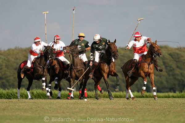 Thomas Winter schnellster am Ball Foto, horses poloimage ...