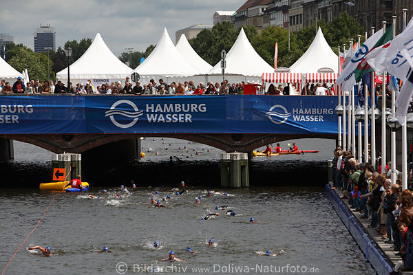 triathlon schwimmer foto unter reesendammbr cke jedermann staffeln sprintdistanz in alster bild. Black Bedroom Furniture Sets. Home Design Ideas
