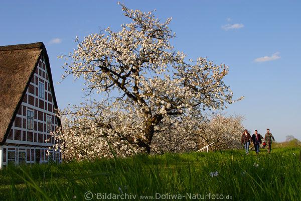Altes Land Trio Spaziergang Foto auf Deichpfad in