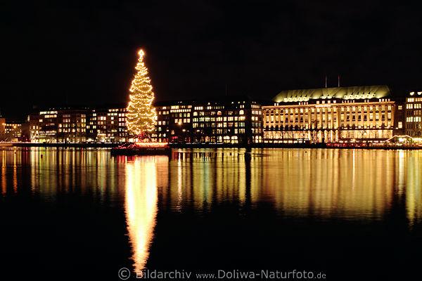 Weihnachtsbilder Hamburg.Alster Weihnachtsbaum Foto Nachtpanorama Hamburg City Lichter