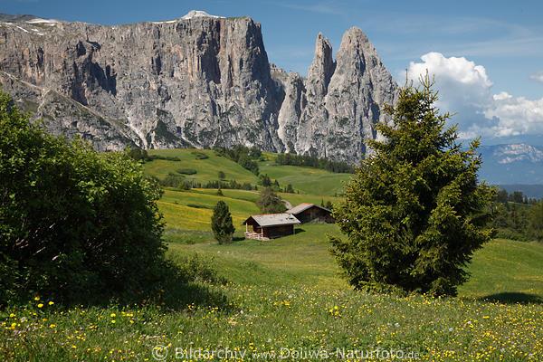 Beste Hotels In Sudtirol