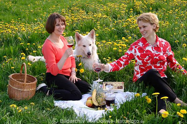 Relax Im Grünen: Picknick Blumenwiese Fotos Frauen Im Grünen Mit Hund Wein