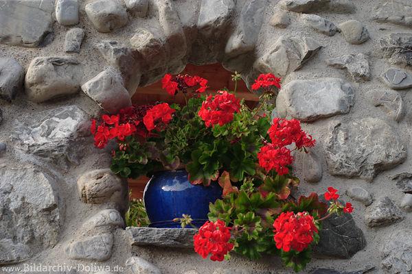 steinwand dekorfenster blauer topf mit roten blumen als. Black Bedroom Furniture Sets. Home Design Ideas