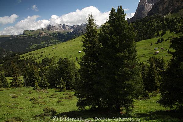 Appartamenti Sudtirol
